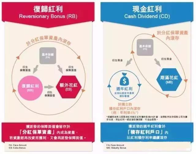 香港保险中的「英式分红」和「美式分红」到底有什么区别